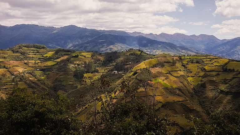 alpen sierra visiting mountainside coffee farms
