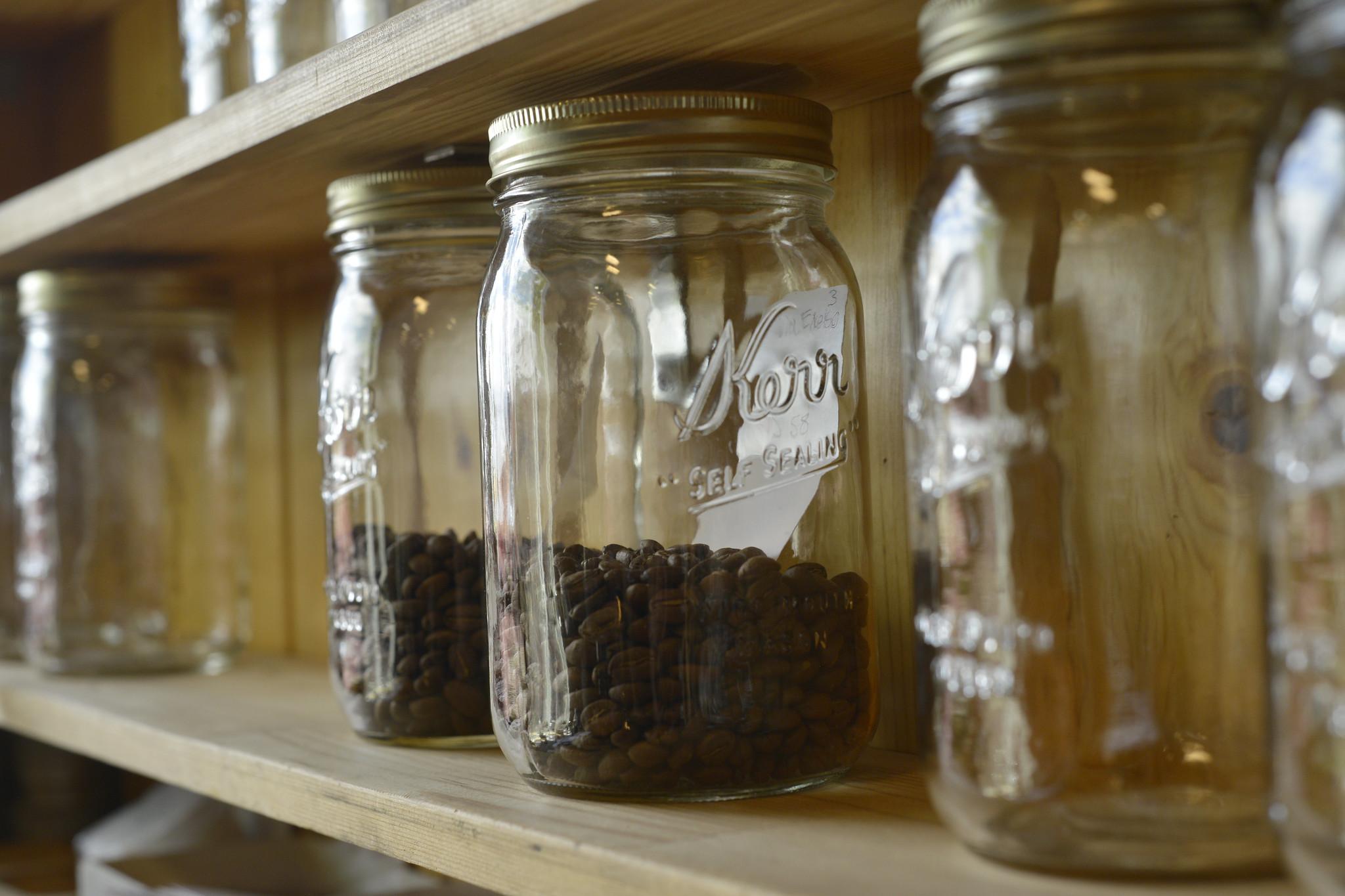 coffee bean samples